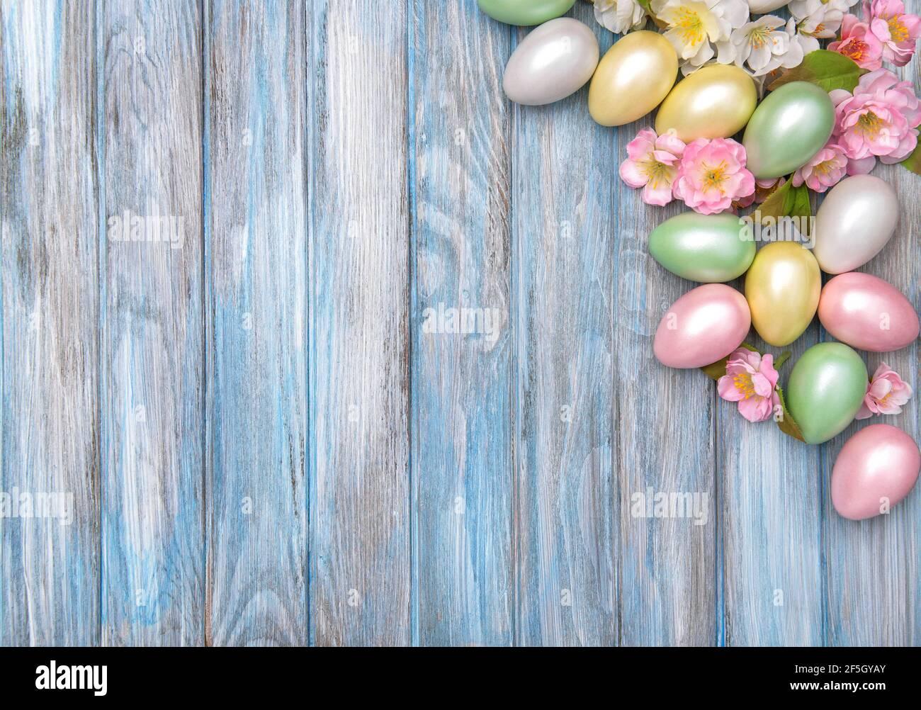 Arrière-plan de Pâques. Œufs colorés aux fleurs de printemps roses Banque D'Images