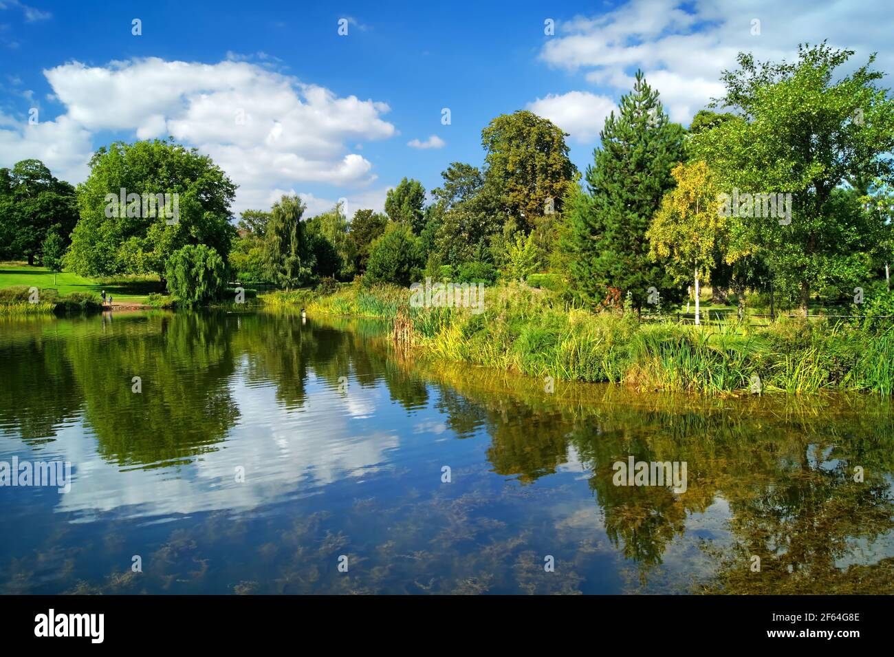 Royaume-Uni, Yorkshire du Sud, Doncaster, Cusworth Park Banque D'Images
