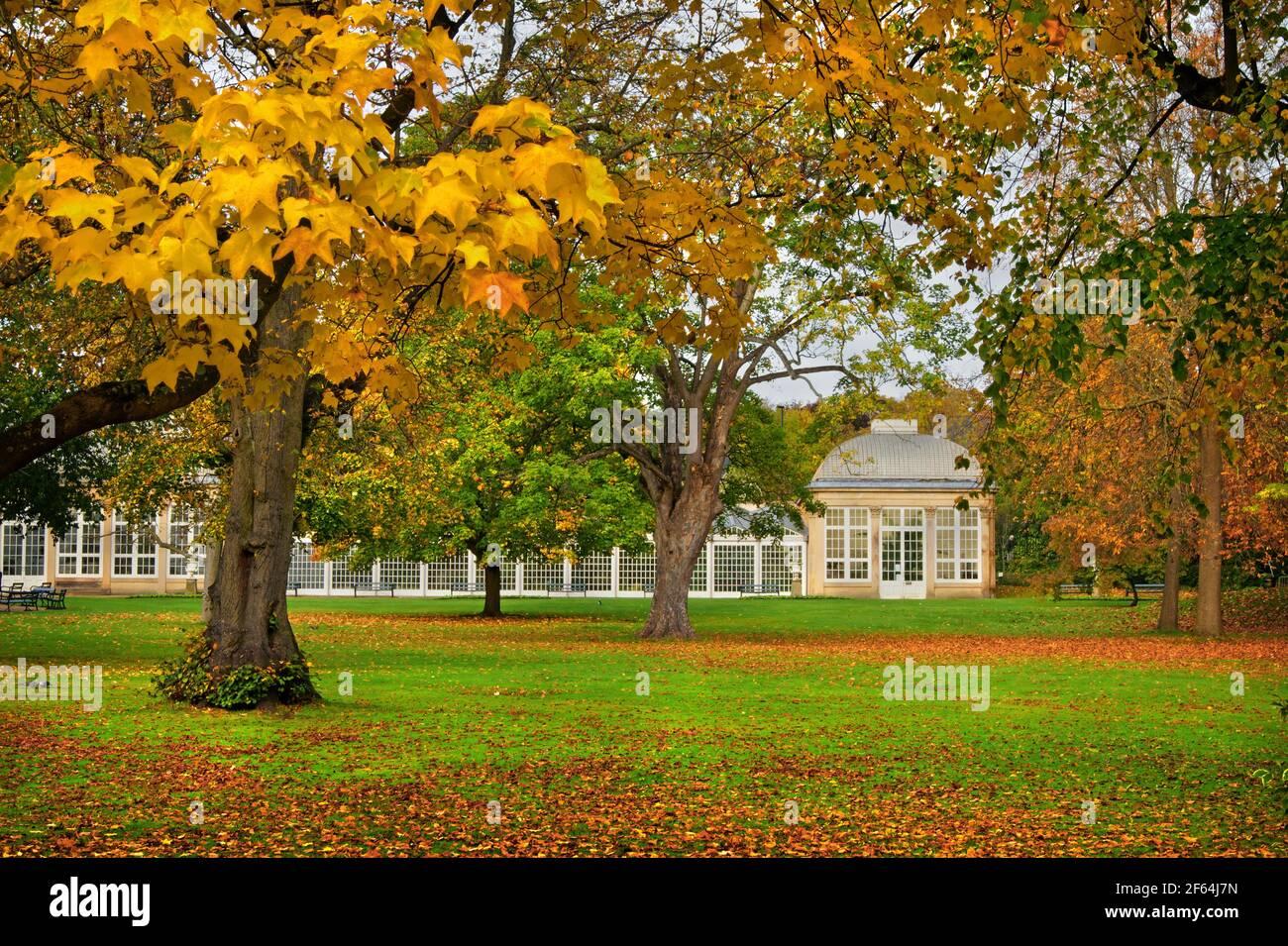 UK,South Yorkshire,Sheffield,Botanical Gardens et la maison de verre, au cours de l'automne Banque D'Images