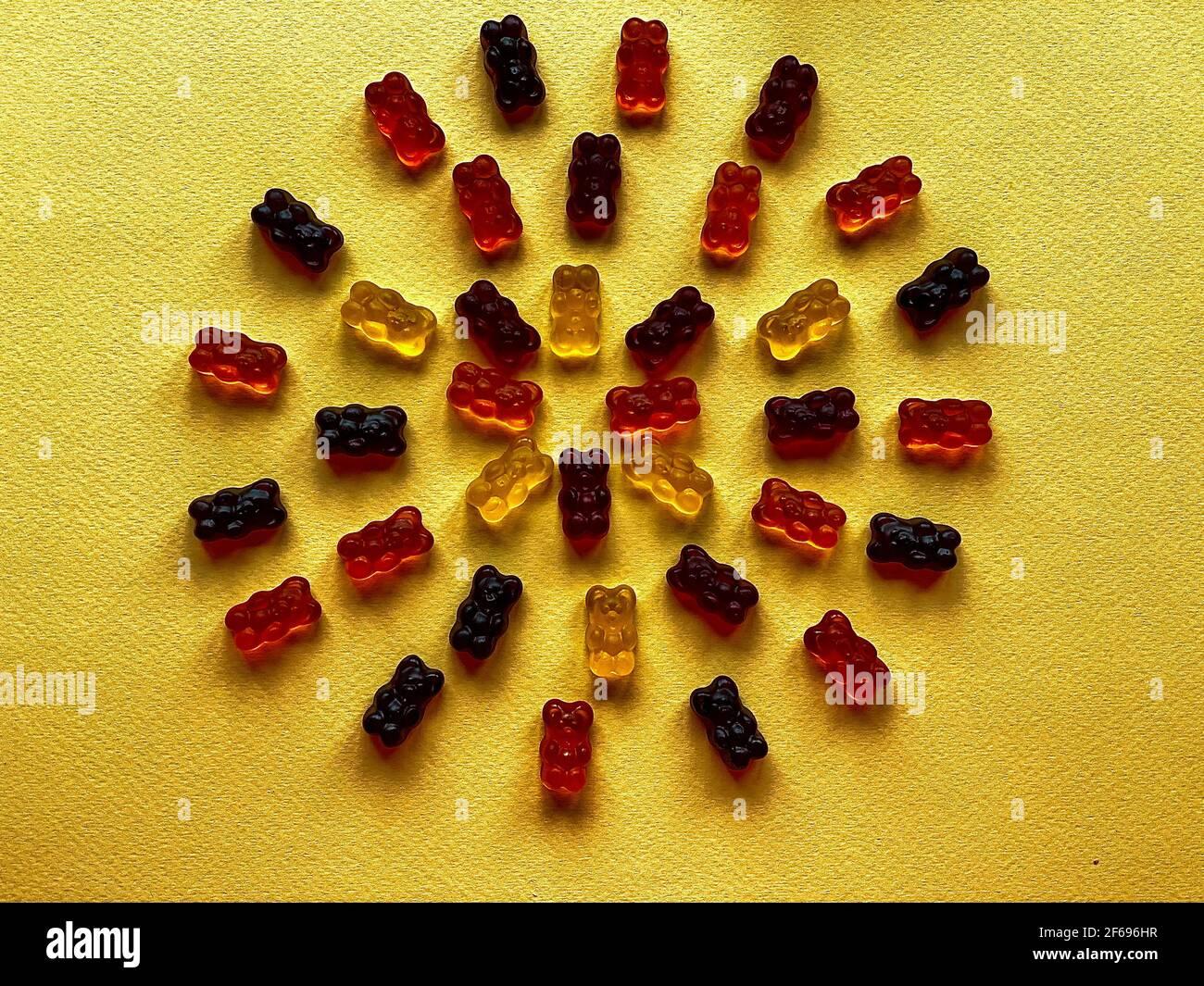 des ours délicieux, superbement disposés, sur fond jaune Banque D'Images