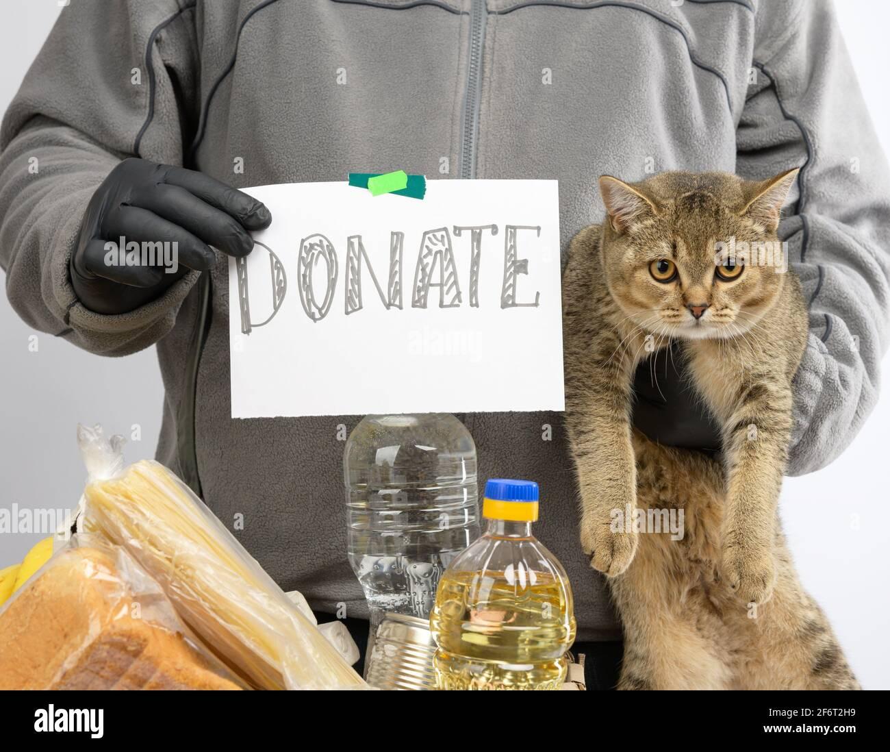l'homme recueille de la nourriture, des fruits et des choses dans une boîte en carton pour aider les nécessiteux et les pauvres, aider et le concept de bénévolat. Banque D'Images