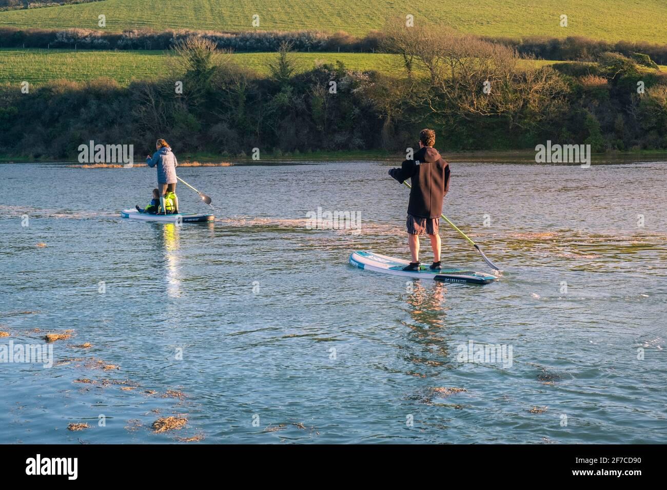 Une famille de vacanciers qui s'amusent à pagayer leurs paddleboards Stand Up à marée haute sur la rivière Gannel à Newquay en Cornouailles. Banque D'Images