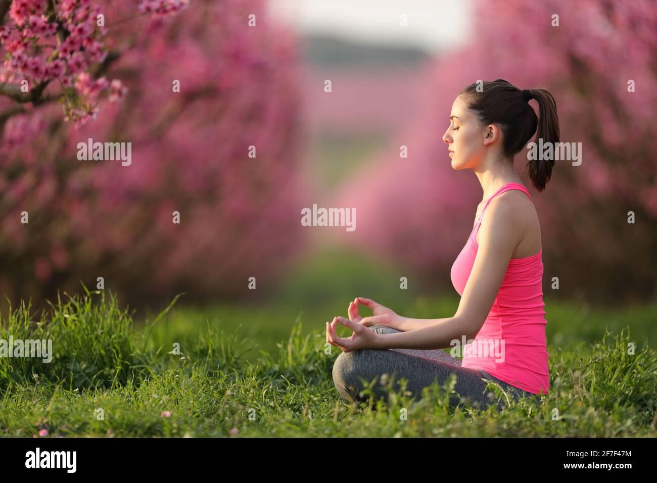 Profil d'un yogi concentré en rose faisant de l'exercice de yoga dans un champ au coucher du soleil Banque D'Images