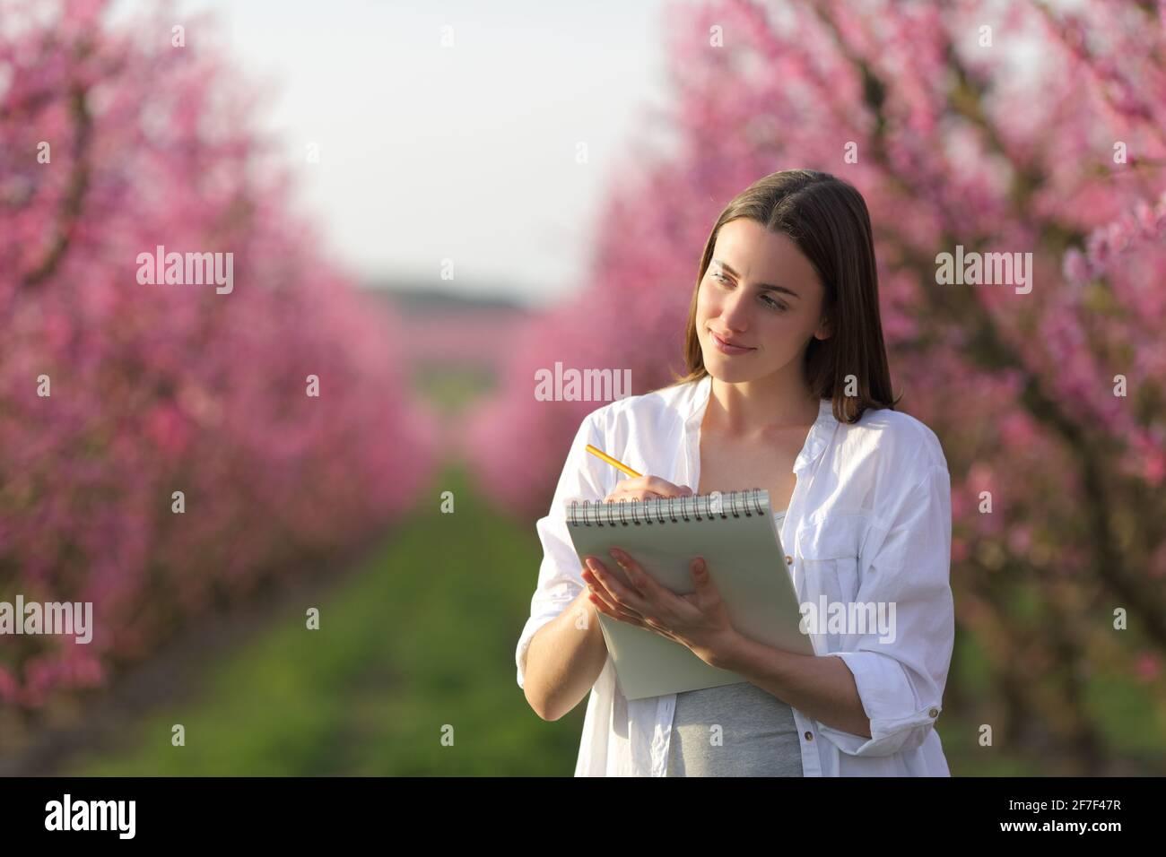 Bonne femme à dessiner sur un carnet dans un champ fleuri rose au printemps Banque D'Images