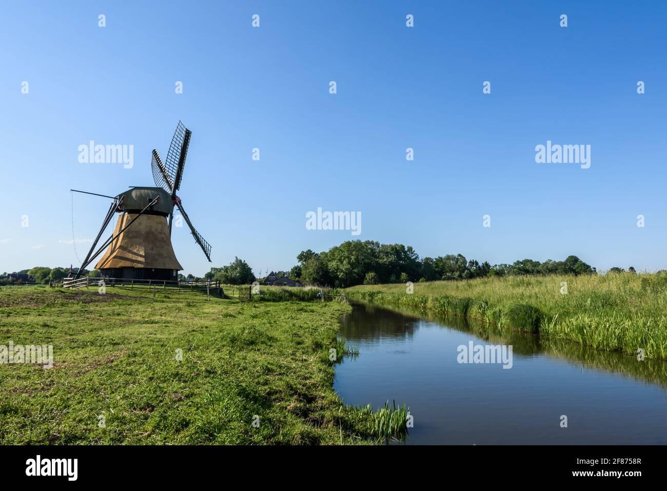 Wedelfelder Miil, moulin à vent historique en milieu rural, Frise orientale, Basse-Saxe, Allemagne Banque D'Images