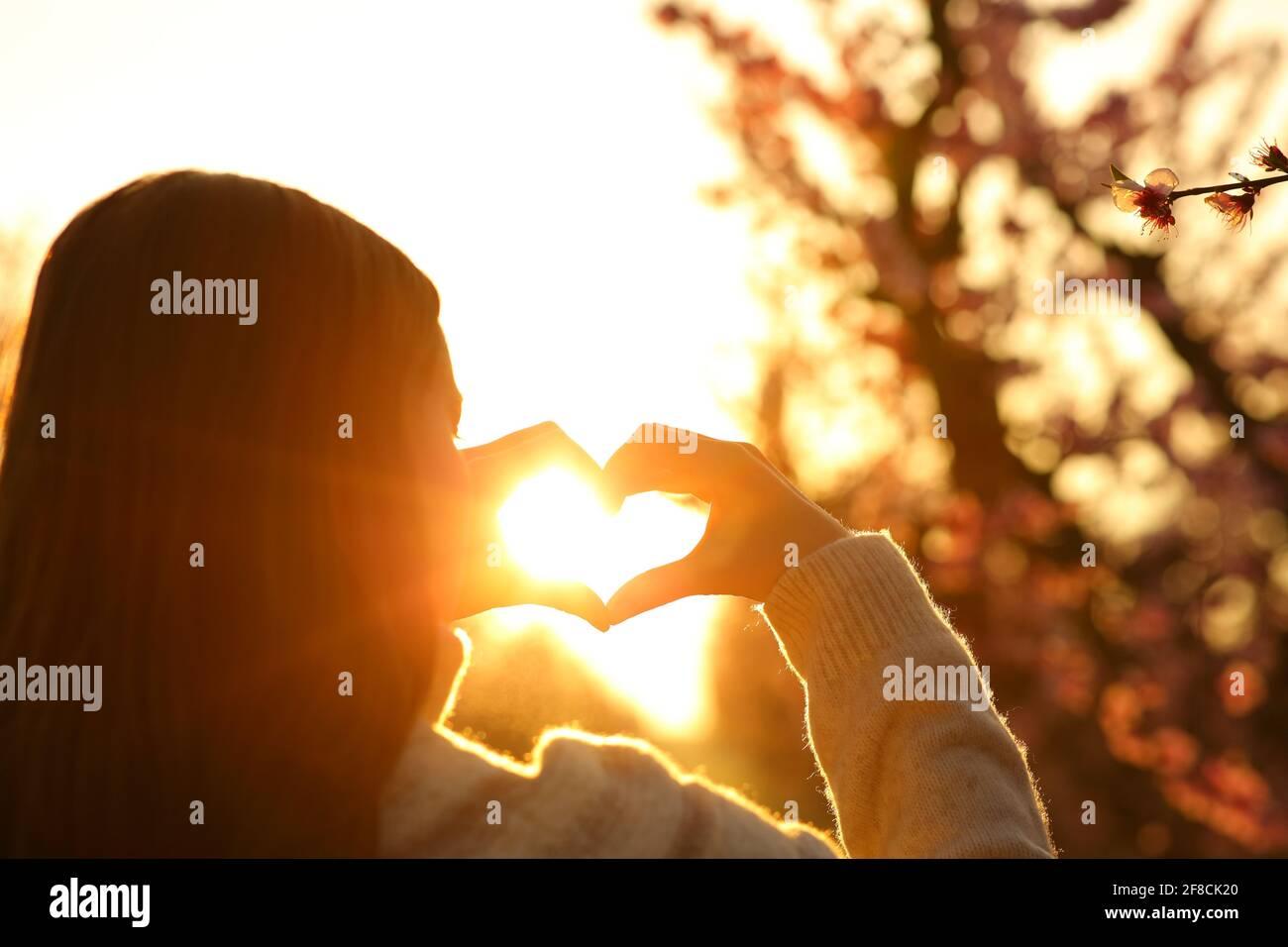 Gros plan d'une femme mains faisant la forme du cœur à coucher de soleil dans un champ Banque D'Images