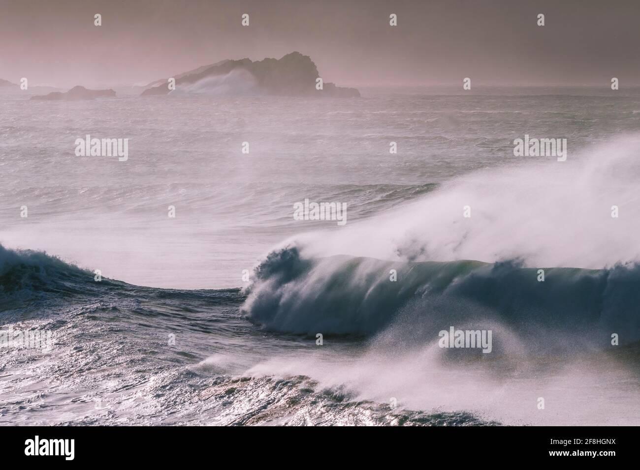 Des projections ont été soufflées par de forts vents au large de la baie Fistral, à Newquay, en Cornwall. Banque D'Images