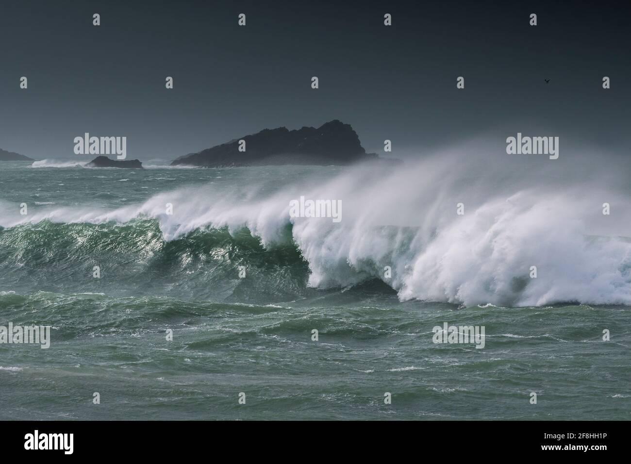 Une image panoramique des vagues sauvages qui se brisent et de la mer bâclée Autour de l'île Goose au large de la pointe de Pentire point East À Fistral Bay, à Newquay, à Cornw Banque D'Images