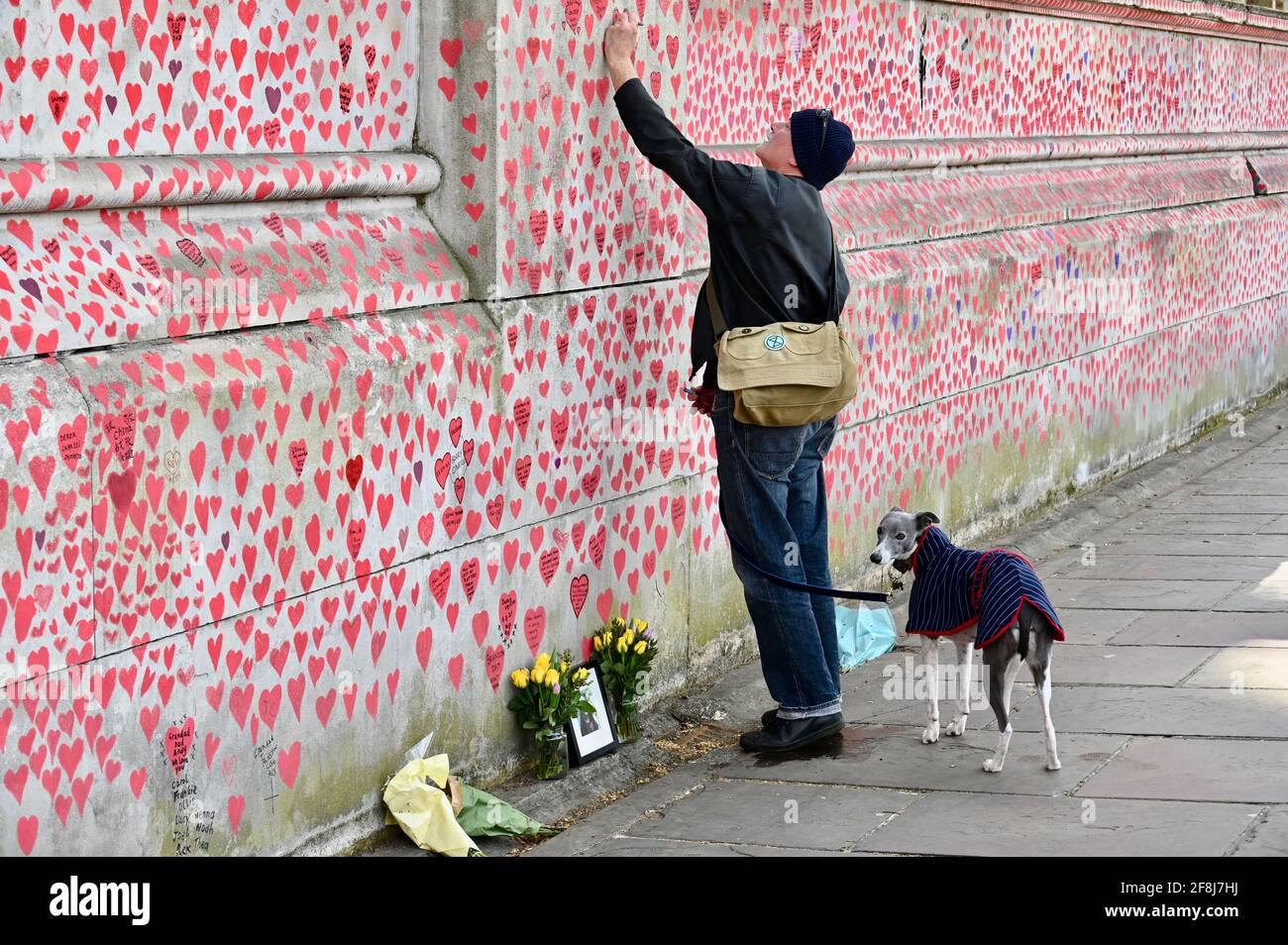 Londres. ROYAUME-UNI. 14 avril 2021, le public continue de se rendre au mur commémoratif de la COVID pour les victimes du coronavirus qui sont décédé l'année dernière. Hôpital St Thomas, Londres Banque D'Images