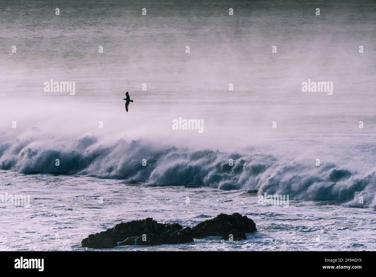 Grandes vagues et vents violents à la baie Fistral, à Newquay, dans les Cornouailles. Banque D'Images