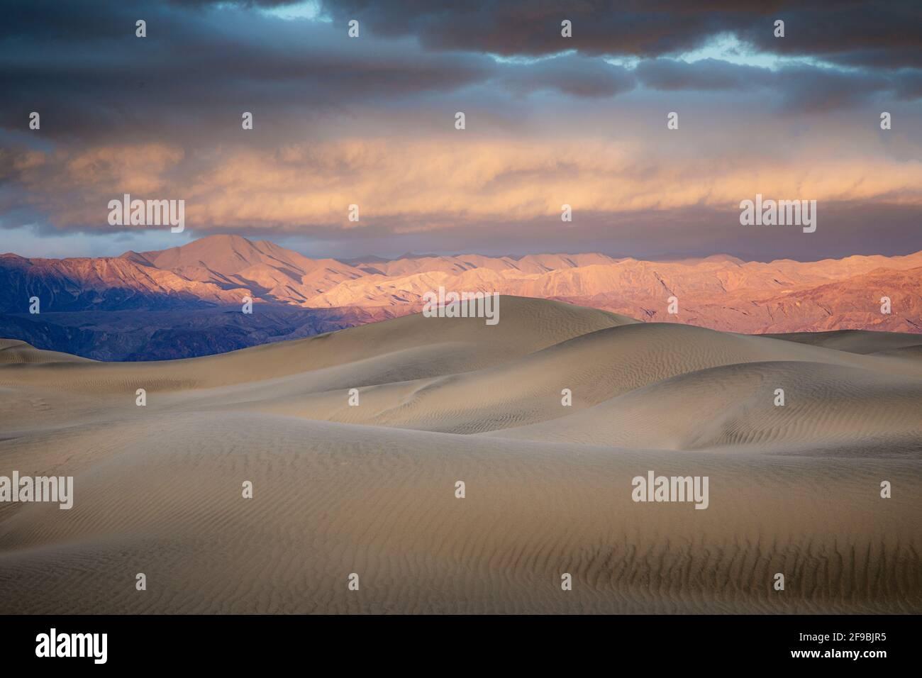 Les dunes de sable de Mesquite Flat dans la vallée de la mort, Californie. Banque D'Images