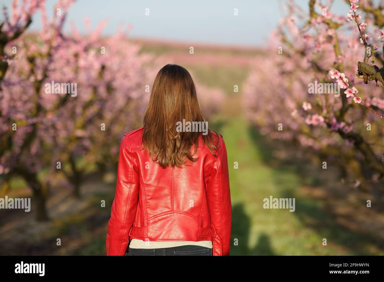 Vue arrière portrait d'une femme en rouge qui marche en travers un champ au printemps Banque D'Images