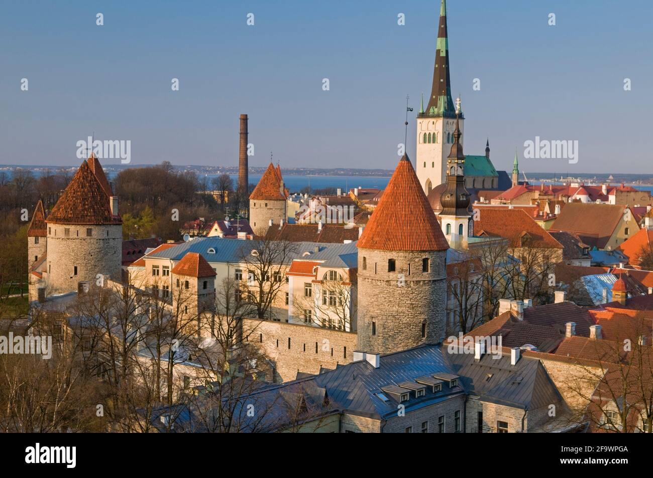 Vieille Ville Vue Ville Tallinn Estonie Banque D'Images