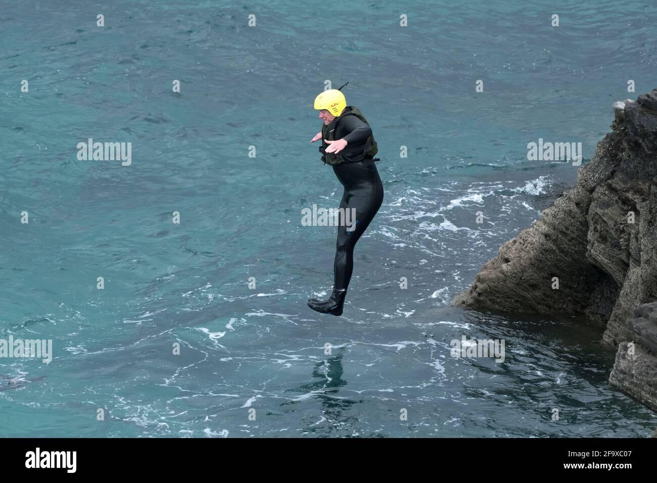 Un holographe de codirection sautant dans la mer depuis les rochers lors d'un voyage de codirection autour de Towan Head à Newquay, dans les Cornouailles. Banque D'Images