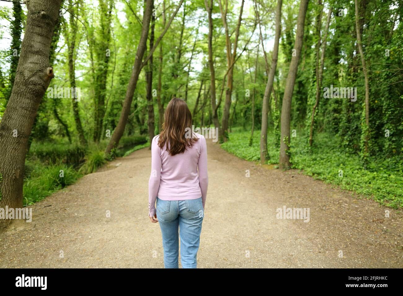 Vue arrière portrait d'une femme décontractée marchant dans un chemin forestier Banque D'Images