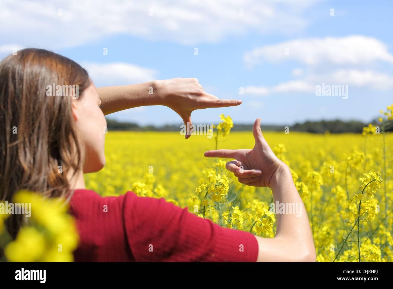 Gros plan d'une femme mains encadrement fleur dans un champ jaune au printemps Banque D'Images