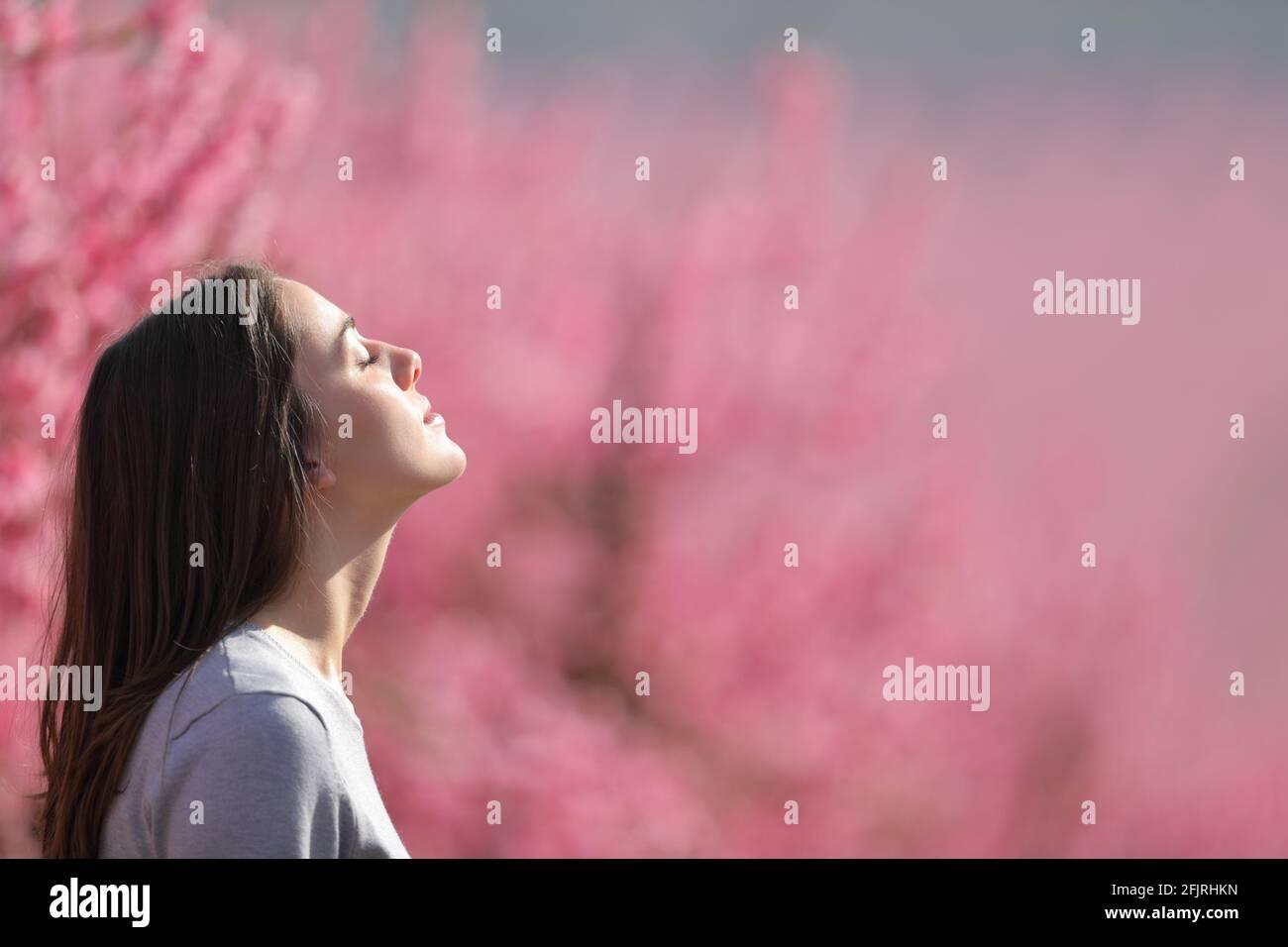 Profil d'une femme détendue respirant de l'air frais dans un champ rose de pêchers Banque D'Images