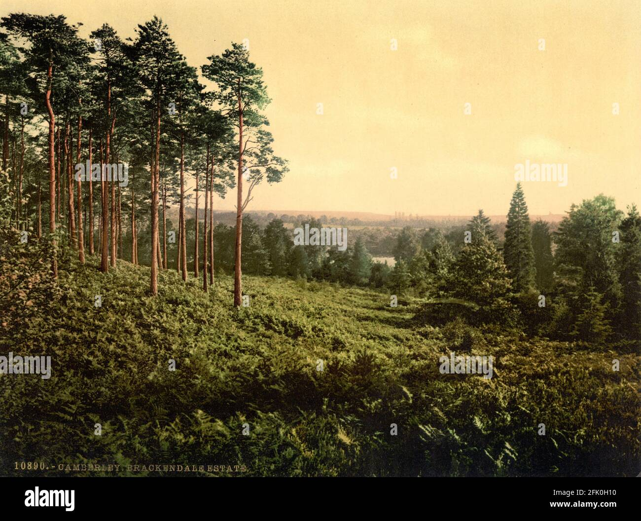 Domaine Brackendale, Camberley, Surrey vers 1890-1900 Banque D'Images