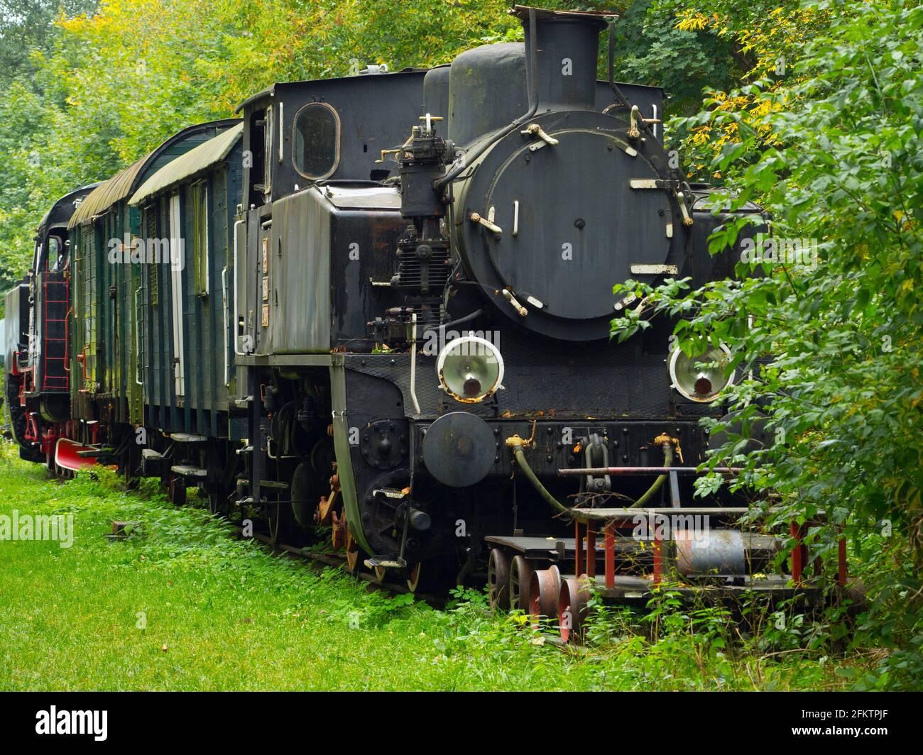 Pologne. Bialowieza. Ancienne locomotive Banque D'Images