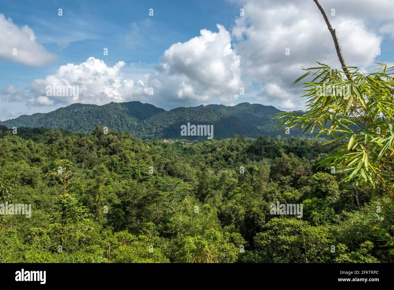 Vue sur les Highlands de Borneo à Kampung Semaru, Padawan, Sarawak, Malaisie orientale Banque D'Images