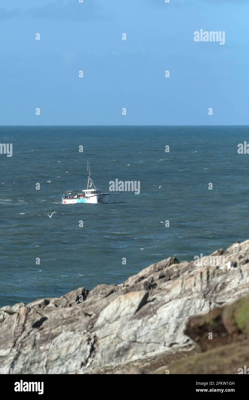 Le bateau de pêche trois Jays SS333 se ramenant au port en passant par Towan Head sur la côte de Newquay en Cornouailles. Banque D'Images