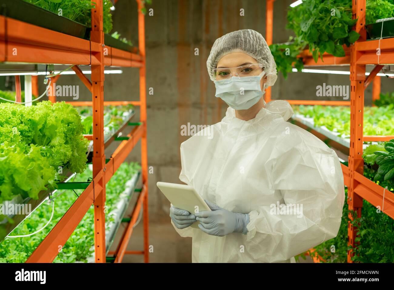 Portrait d'une femme cultivateur en combinaison de protection, masque et lunettes de protection debout avec une tablette numérique dans une serre agricole verticale Banque D'Images