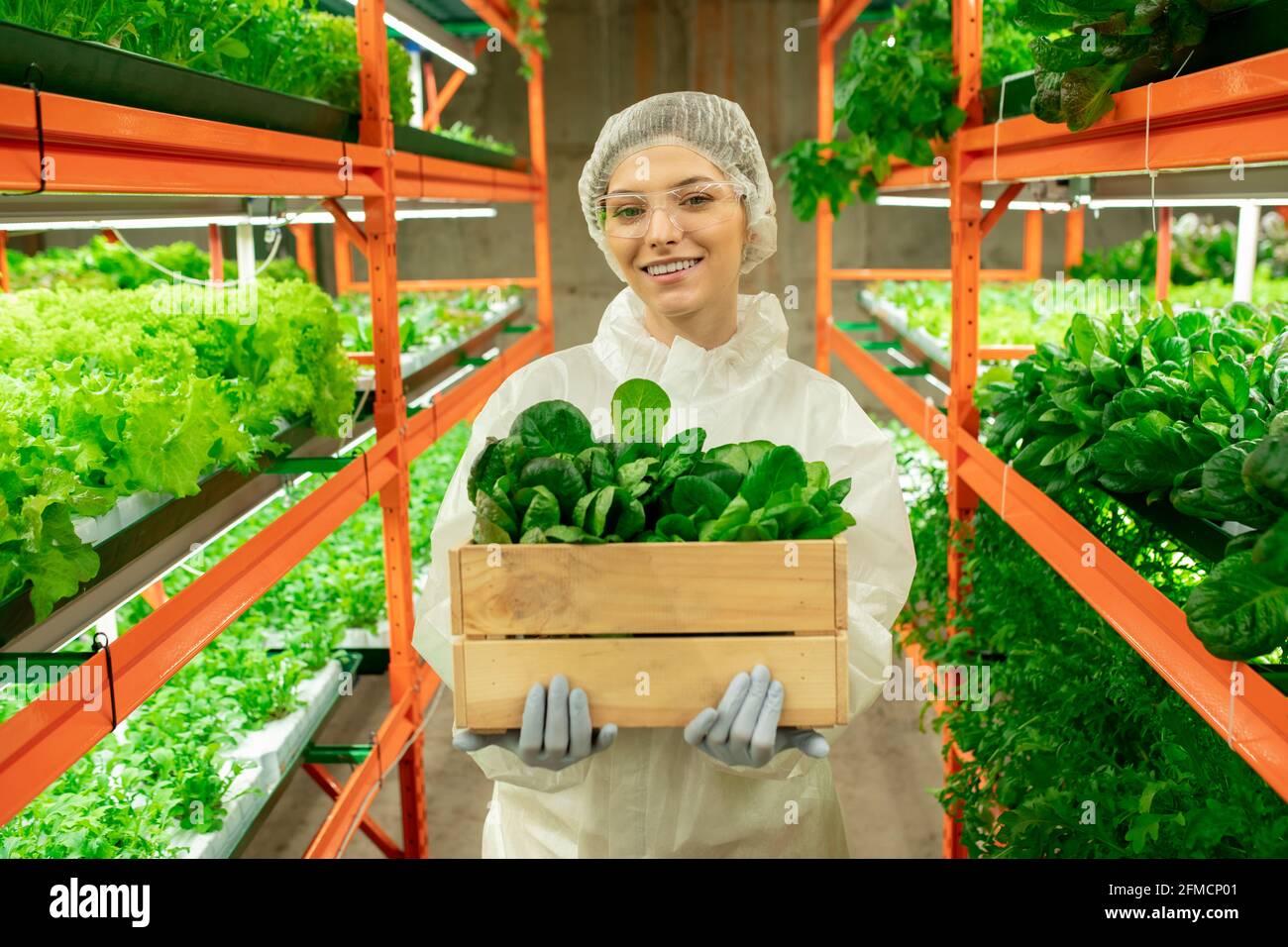 Portrait de jeune employé gai de serre en vêtements de travail de protection et lunettes de protection contenant une boîte de semis dans l'allée de la ferme verticale Banque D'Images