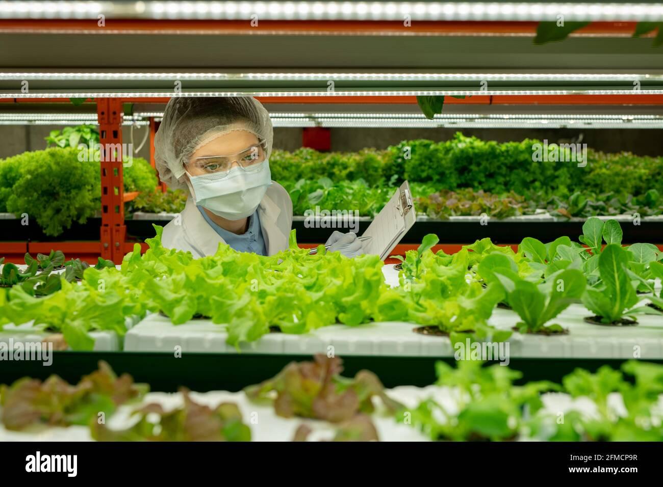 Ouvrier agricole vertical occupé dans les lunettes de sécurité, le capuchon jetable et le masque faisant des notes dans le presse-papiers tout en contrôlant la croissance des semis Banque D'Images