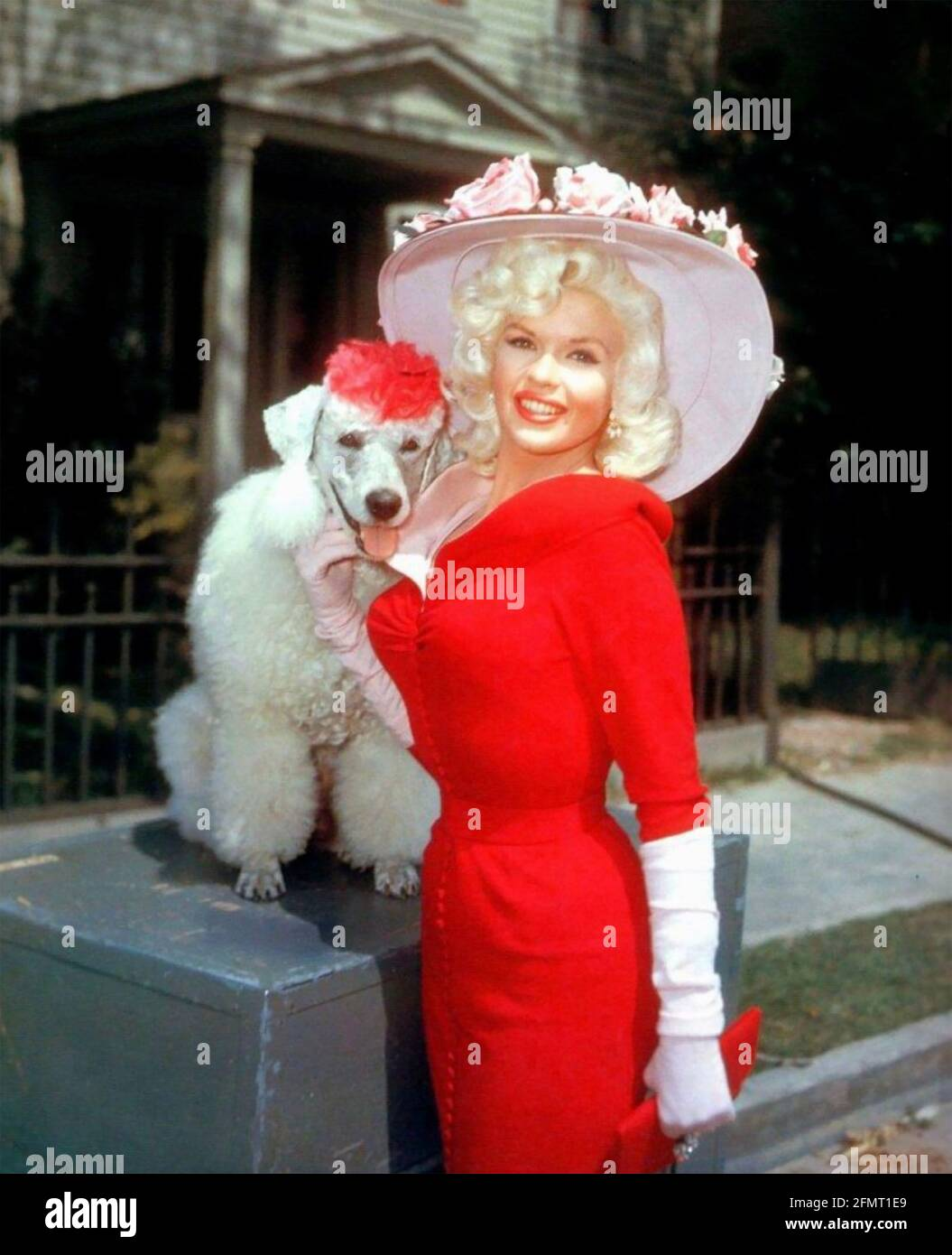 JAYNE MANSFIELD (1933-1967) actrice américaine vers 1957 Banque D'Images