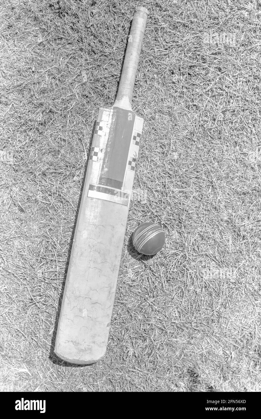 Ancienne batte de cricket britannique et balle australienne sur un terrain d'herbe noir et blanc. Les cendres Banque D'Images