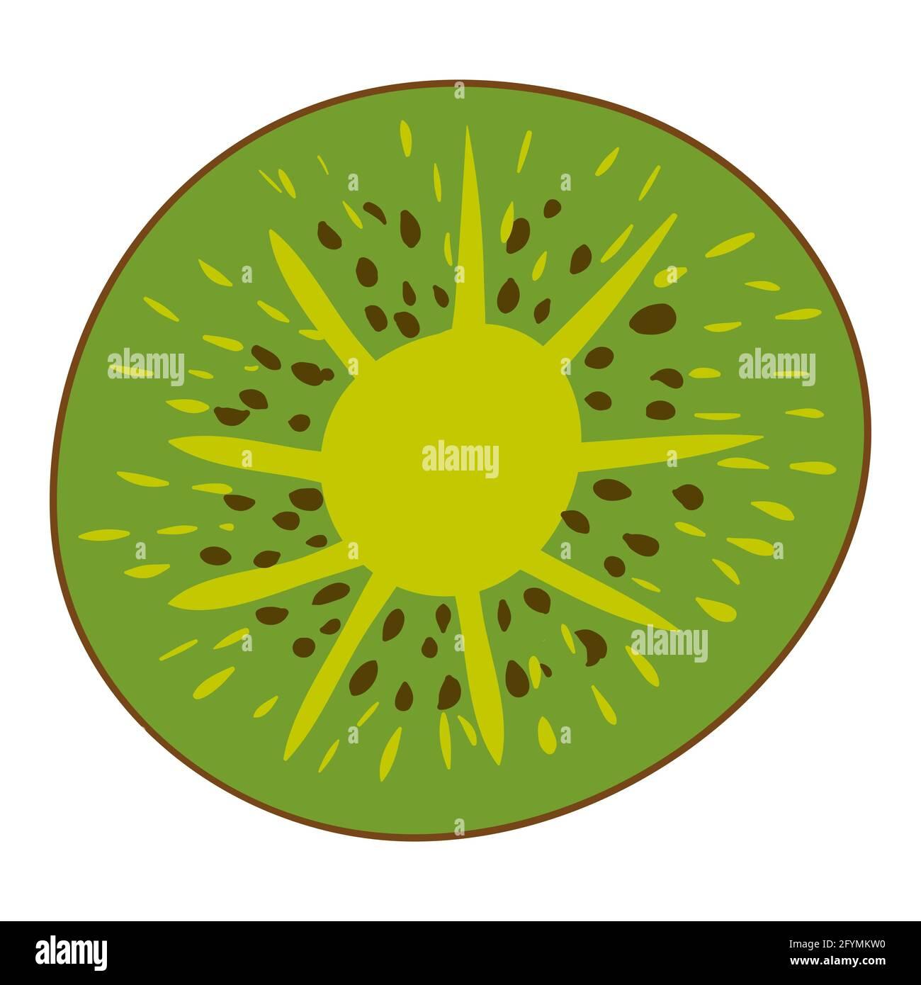 Tranche de kiwi, produit alimentaire naturel sain et biologique. Dessin animé plat à la main dessin à la main isolé Illustration de Vecteur