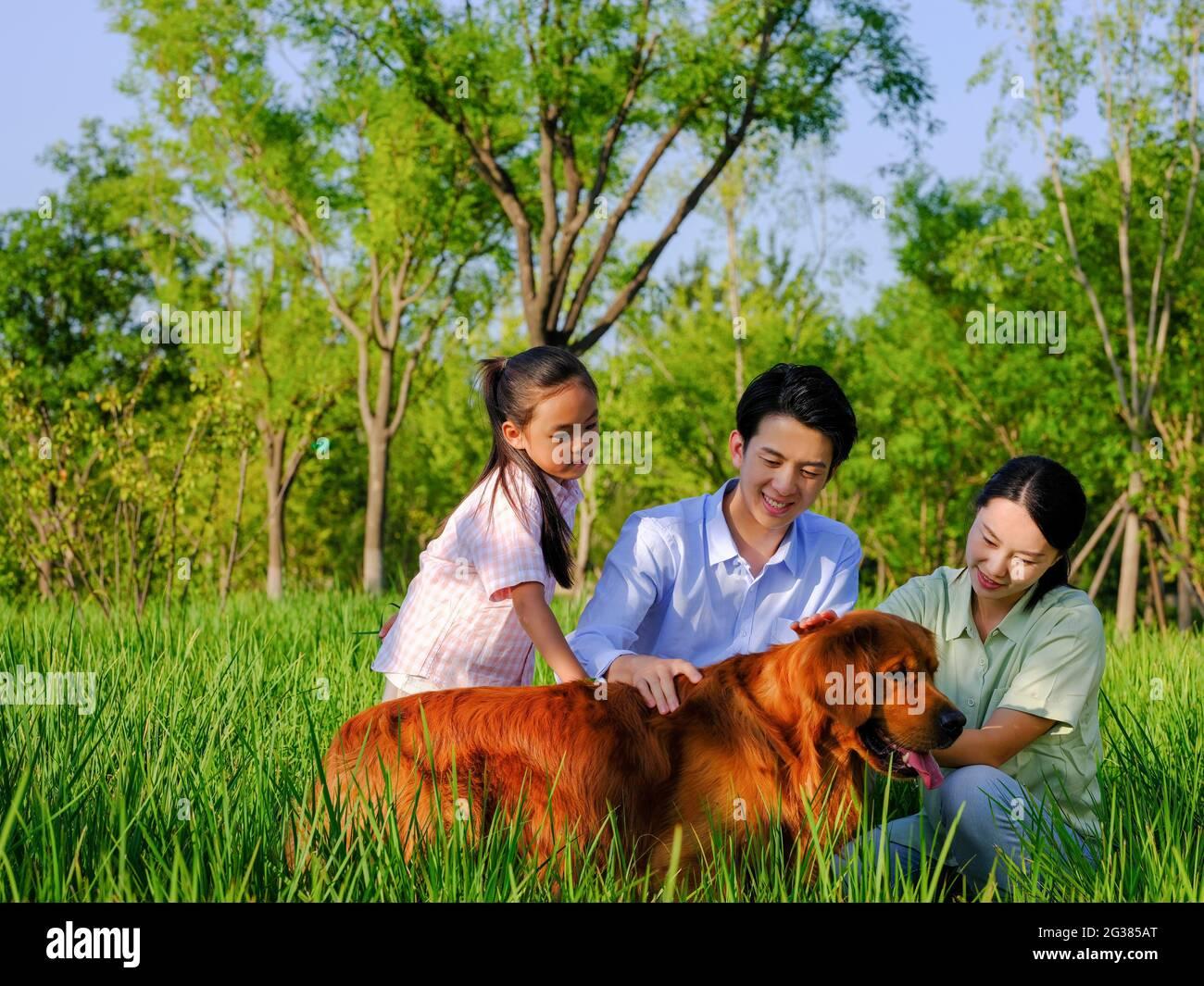 Bonne famille de trois et chien de compagnie jouant dans le parc photo de haute qualité Banque D'Images