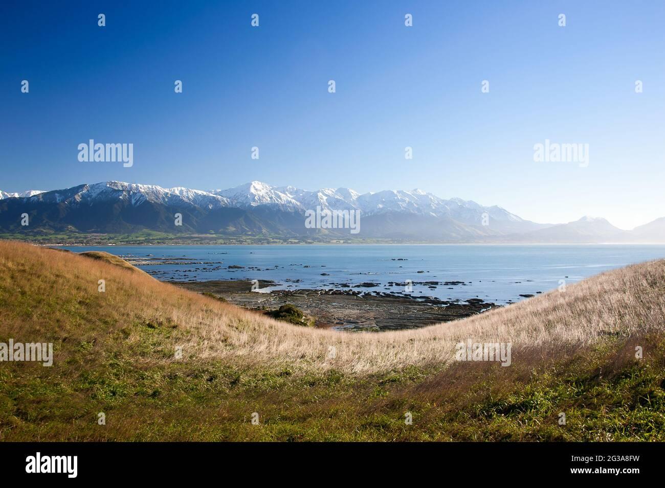 Côte de Kaikoura, Canterbury, Nouvelle-Zélande. Vue panoramique depuis une colline herbeuse, la péninsule de Kaikoura traverse la baie jusqu'aux montagnes enneigées Banque D'Images