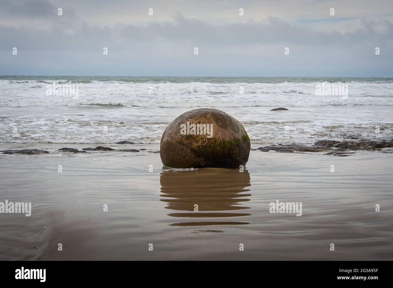 Les Moeraki Boulders sur la plage de Koekohe, Otago. Un seul rocher et des réflexions avec fond gris mer/ciel Banque D'Images