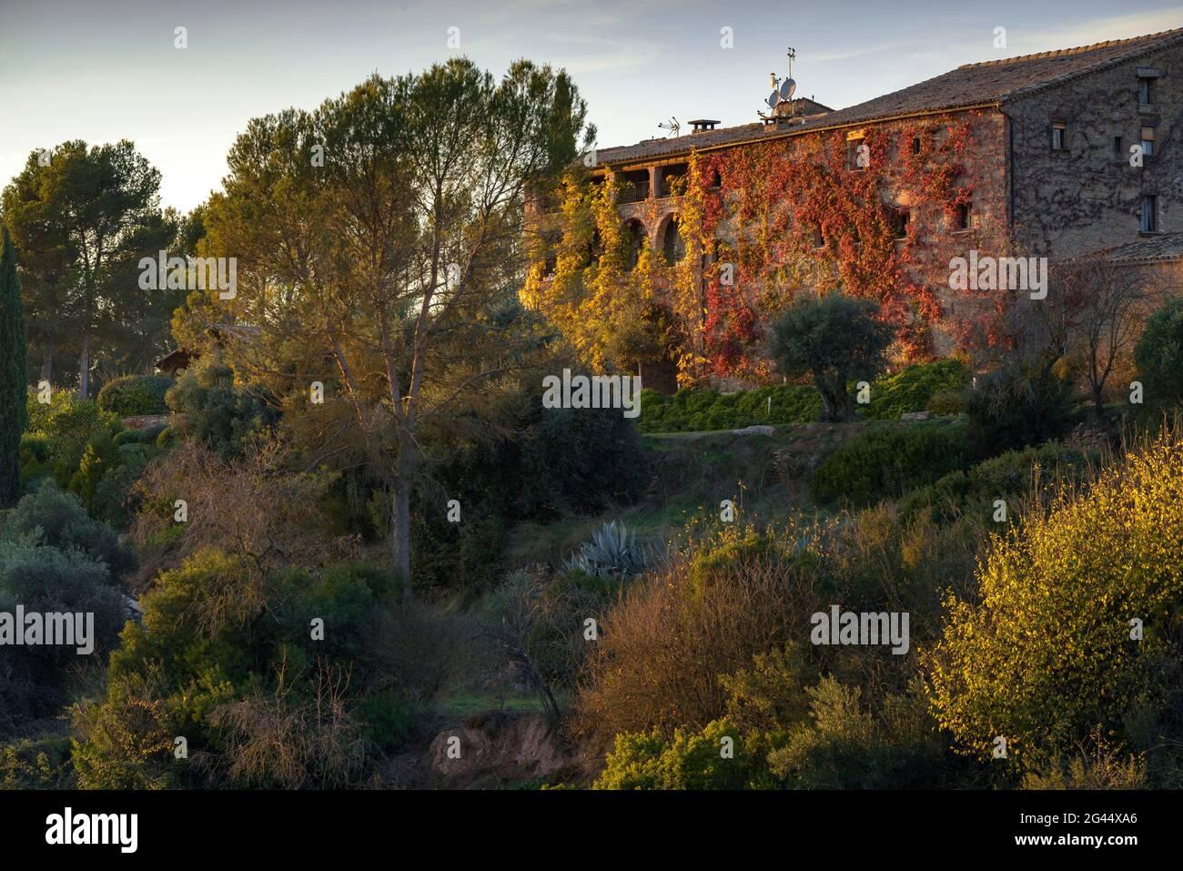 Coucher de soleil à la Garriga de Castelladral maison de campagne, un jour d'automne (Navàs, Barcelone, Catalogne, Espagne) ESP: Atardecer en la Garriga de Castelladral Banque D'Images