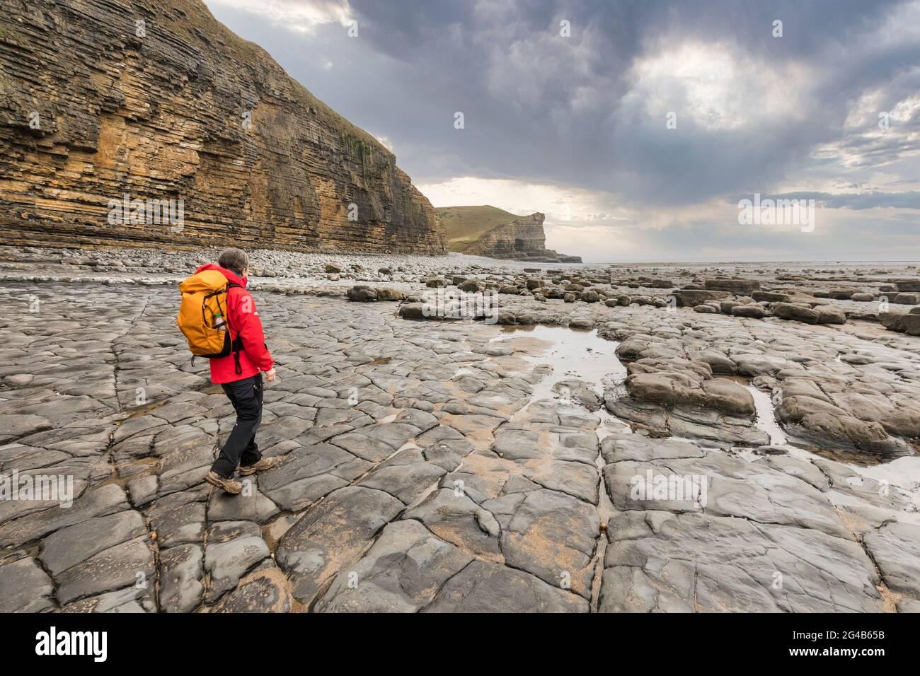 Marche sur la plage de Traeth Mawr sur le Wales Coast Path près de Monknash, pays de Galles, Royaume-Uni Banque D'Images