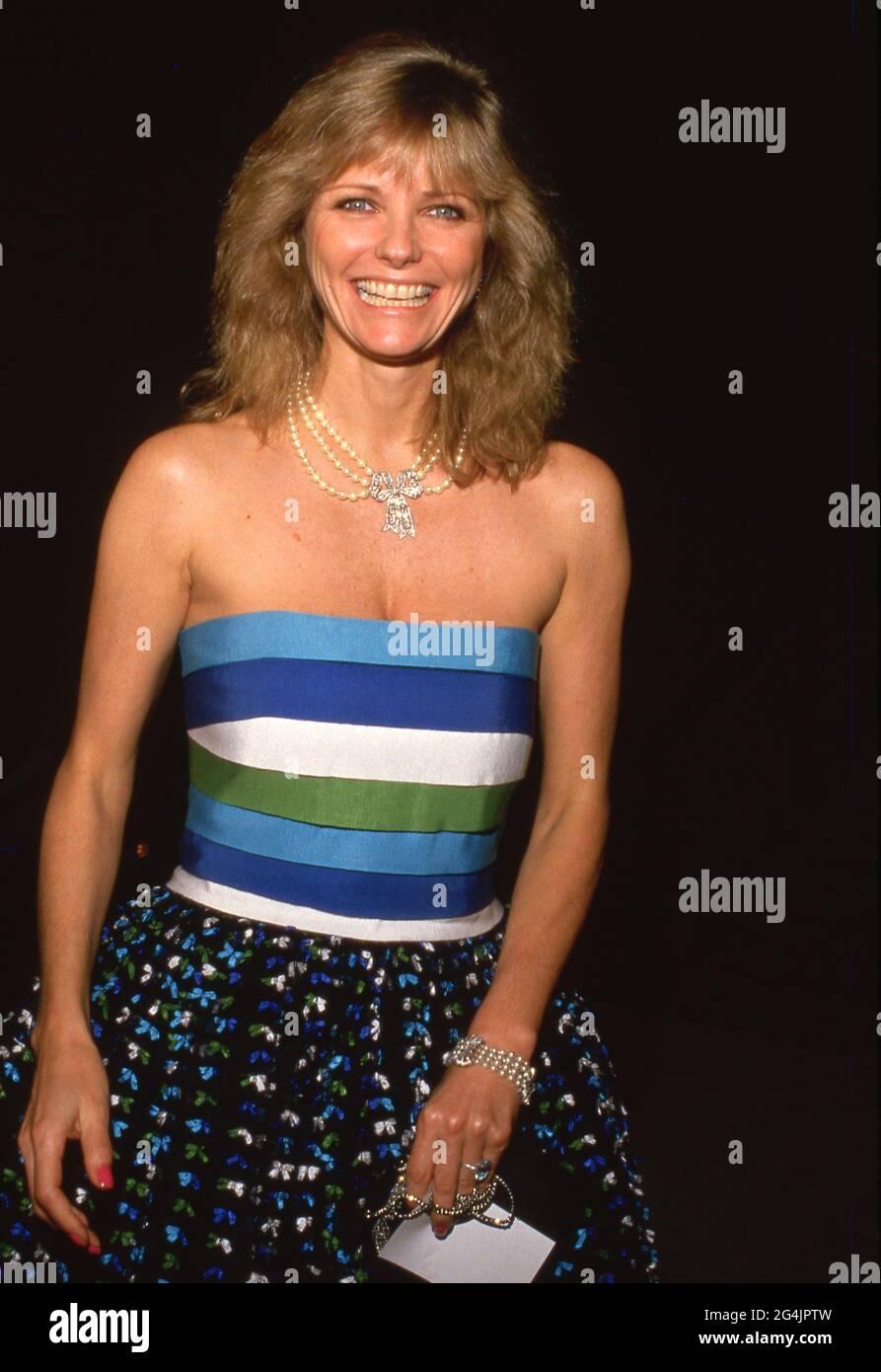 Cheryl Tiegs au Giorgio Armani présente sa collection printemps/été au Musée d'art contemporain de Los Angeles, Californie le 27 janvier 1988 crédit: Ralph Dominguez/MediaPunch Banque D'Images