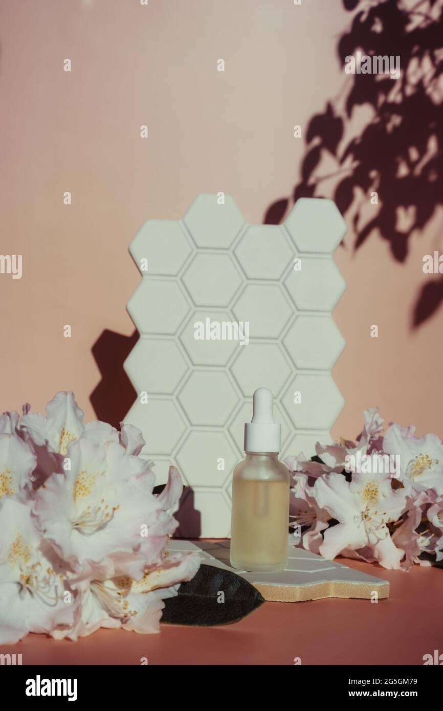 Arrière-plan tendance avec une bouteille d'huile essentielle naturelle, des fleurs exotiques fraîches et des formes géométriques de cellules carrelage avec lumière directe du soleil et ombres dures Banque D'Images