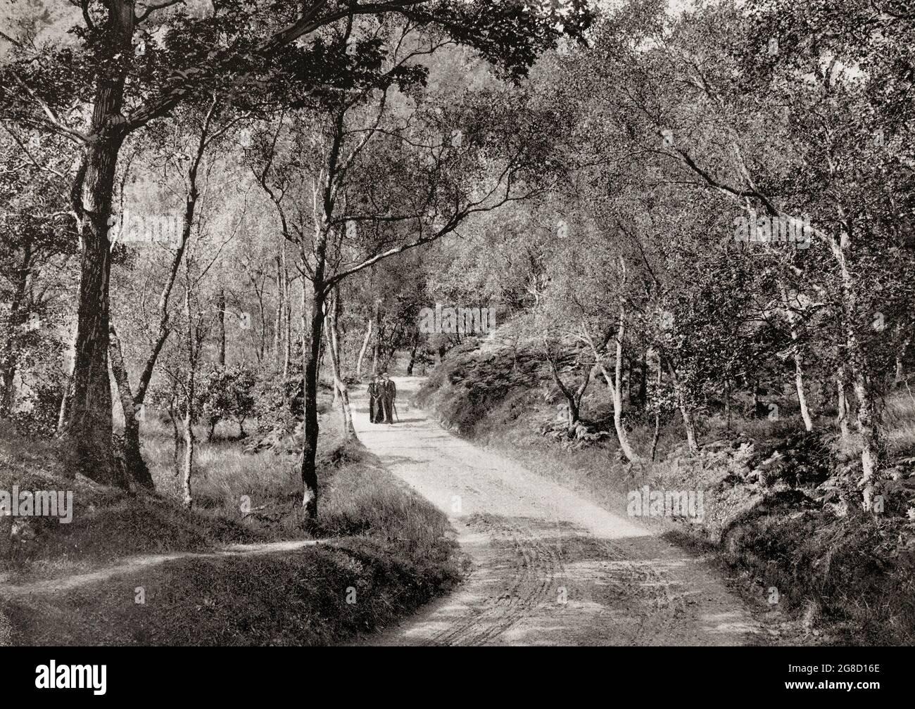 Vue de la fin du XIXe siècle d'un couple qui marche sous le « bouleau gris et tremble », où le chemin a été tracé depuis « la Dame du lac » par Sir Walter Scott, dans les Trossachs, Argyll & Bute, Écosse. Banque D'Images
