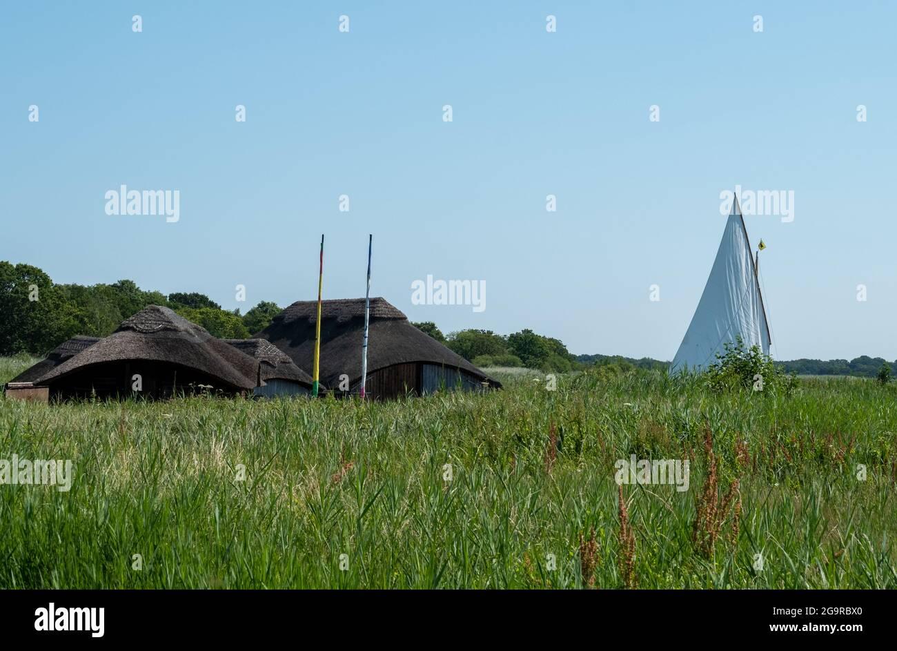 Les serres de chaume sont nichées parmi les grandes roseaux à herbe de Hickling Broad, à l'est de Norwich, dans le Norfolk, au Royaume-Uni. Bateau à voile au loin. Banque D'Images