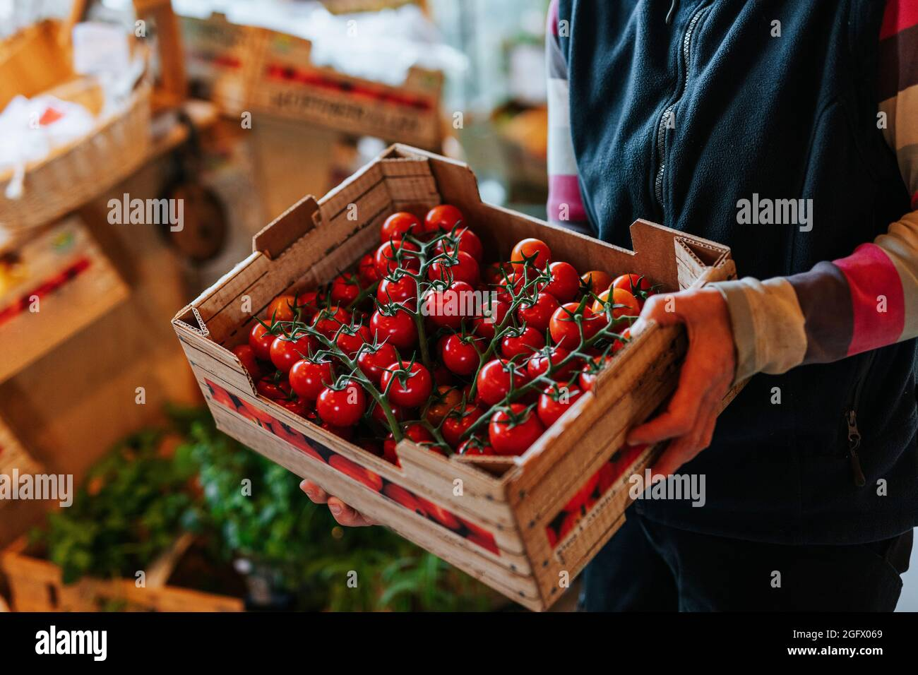 Assistant d'atelier tenant une caisse de tomates Banque D'Images