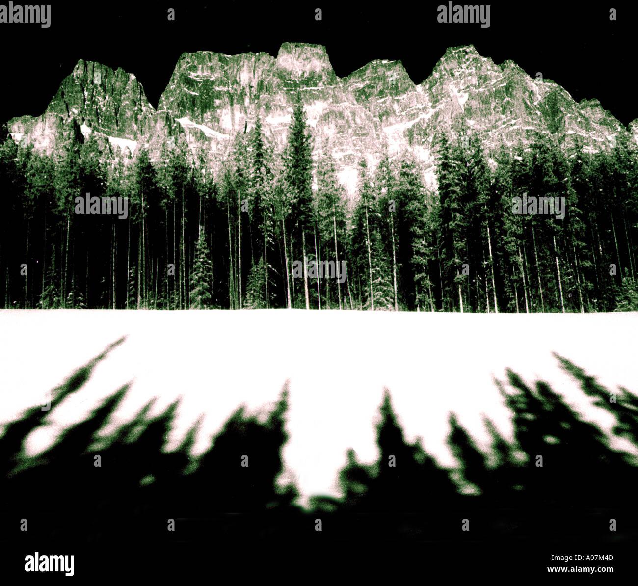 Défi, empreinte écologique, à l'horizontale, à l'extérieur, Noir et Blanc, France, arbre, Jour, neige, Dune de sable, Haute-Savoie, isolés, les gens. Photo Stock