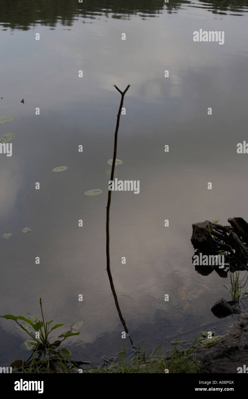 Canne A Peche Fait Maison homemade fishing rod photos & homemade fishing rod images