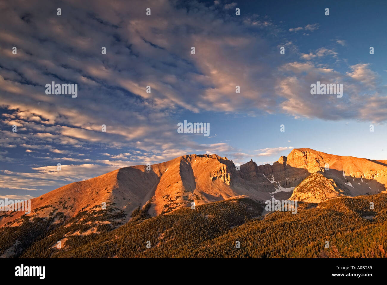 Wheeler Peak au lever du soleil le Parc National du Grand Bassin, Nevada Photo Stock