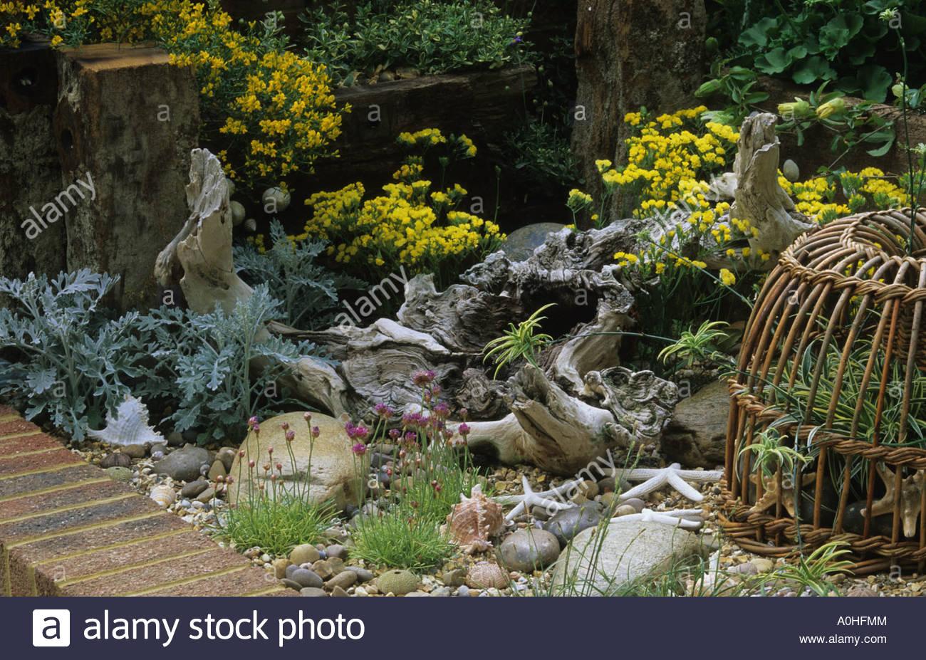 jardin de bord de mer de bois flott limonium sinuatum lavande forever gold galets pierres et de. Black Bedroom Furniture Sets. Home Design Ideas
