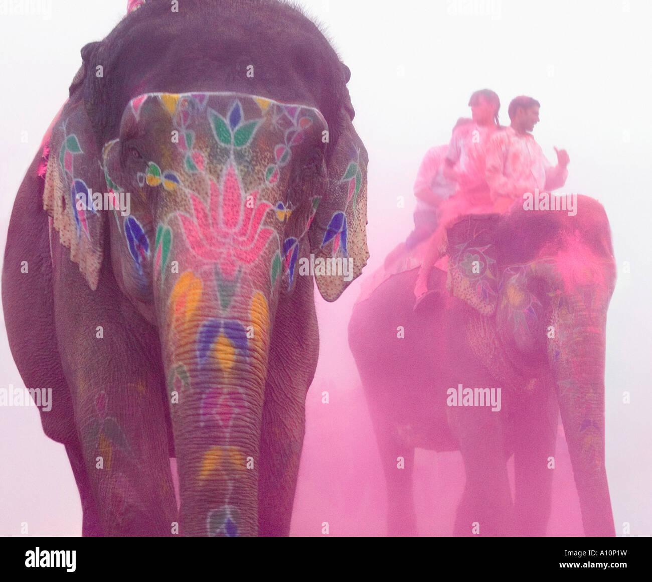 Trois éléphants à un festival de l'éléphant, Jaipur, Rajasthan, Inde Banque D'Images