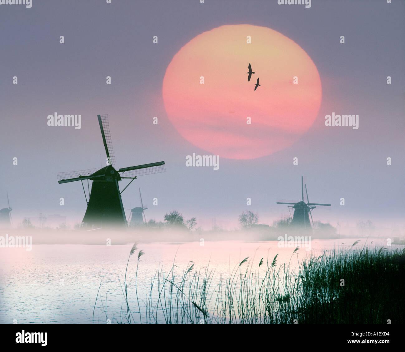 NL - ALBLASSERWAARD: Moulins à Kinderdijk près de Rotterdam Photo Stock