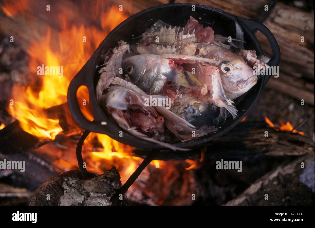 Plus de flammes chaudrée de poisson d'un feu de plage en Nouvelle Zélande Photo Stock