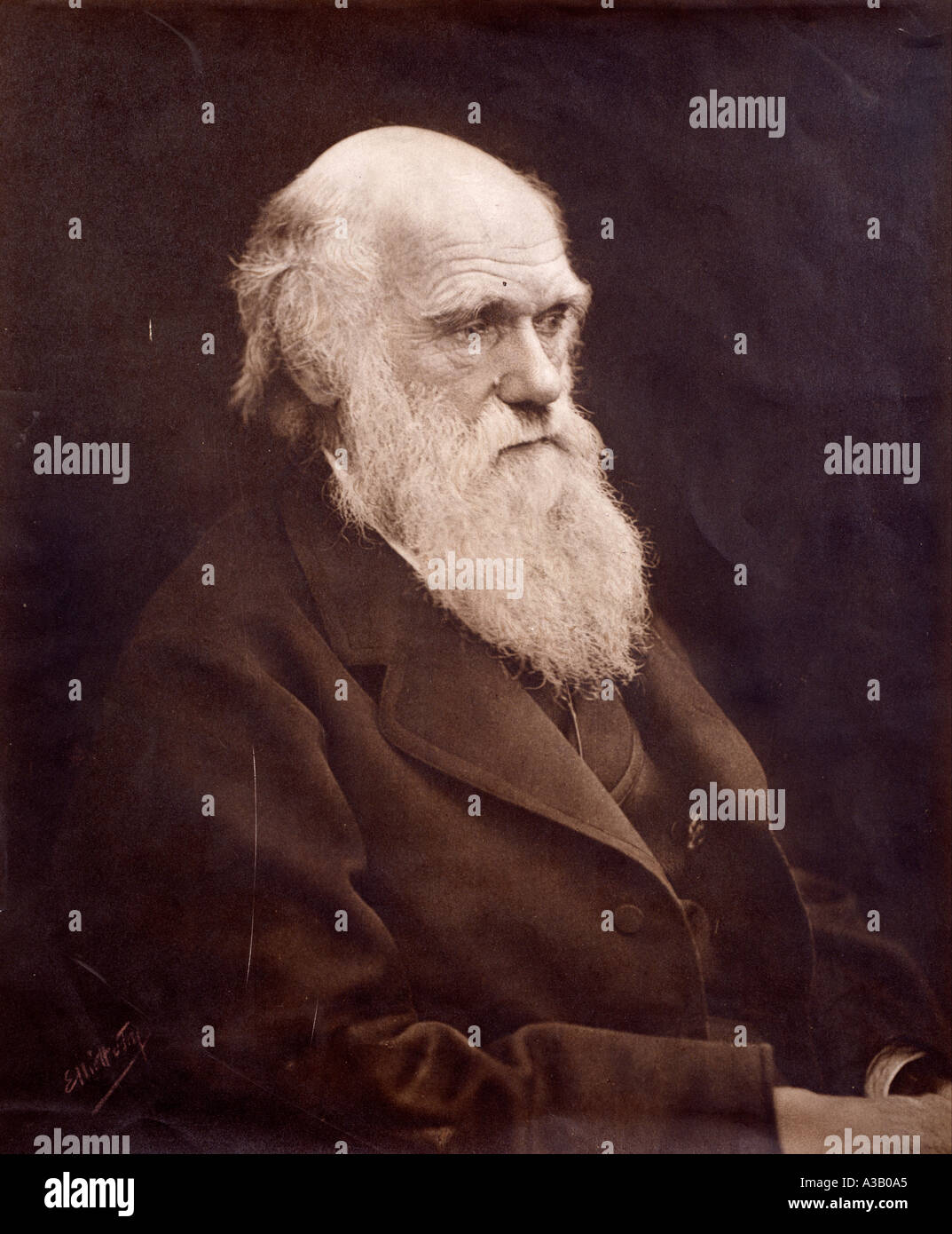 Charles Robert Darwin 1809 1882 Photo Stock