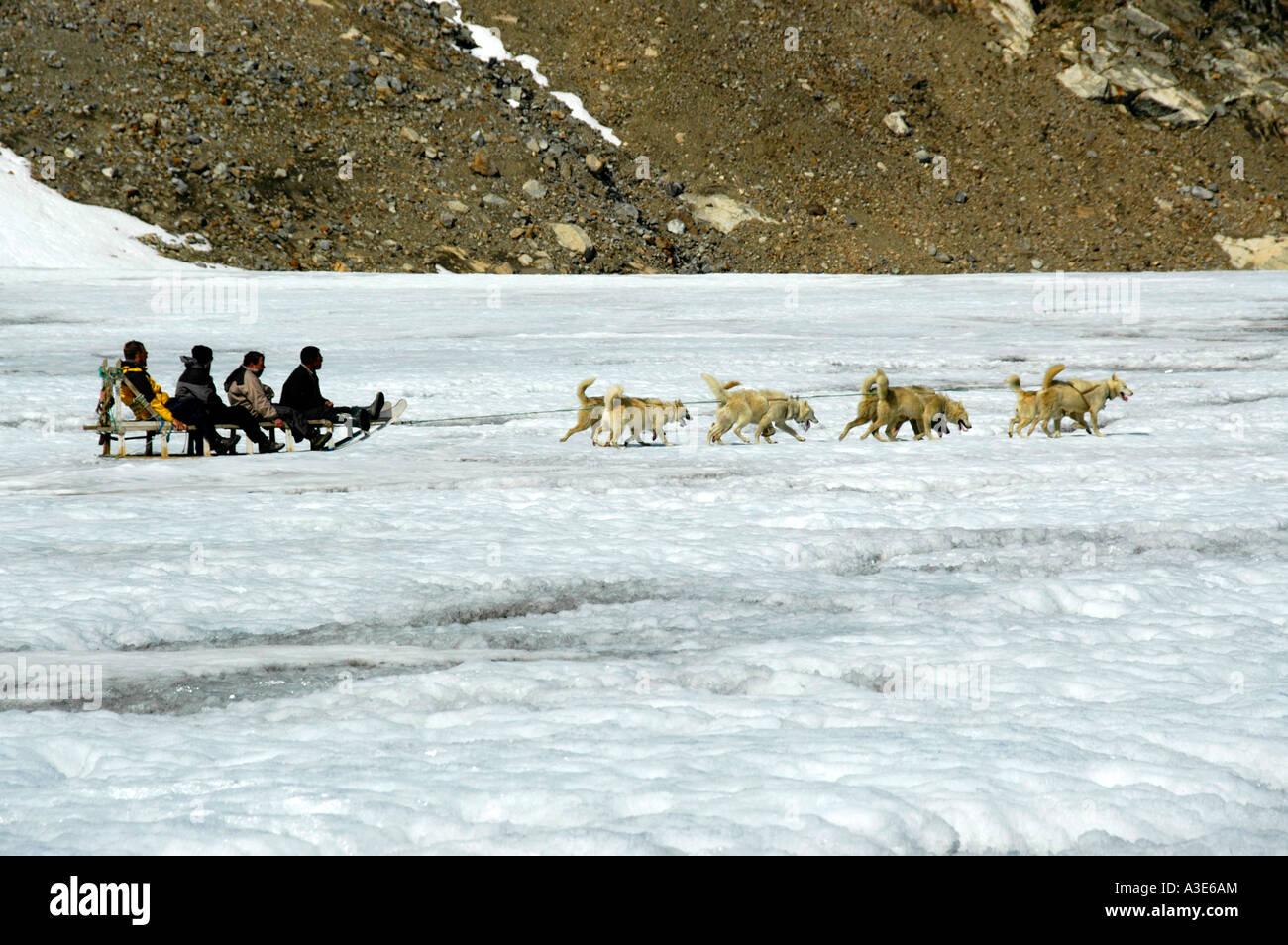 Quatre personnes dans un traîneau tiré par des chiens de traîneau huskys sur Apusiak Eastgreenland Glacier Banque D'Images